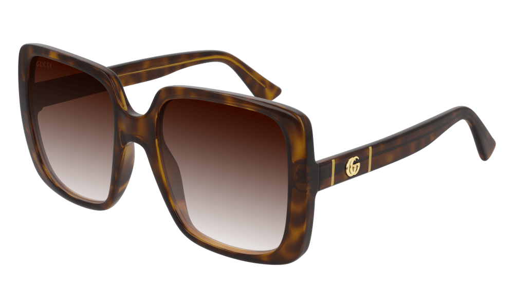 Gucci sunglasses 002 havana brown Gucci GG00632s Big Square Ladies Sunglasses