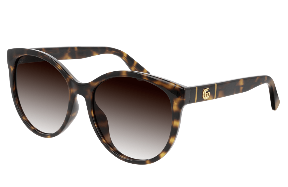 Gucci sunglasses 002 Havana frame brown graduated lens Gucci GG00636SK Ladies Sunglasses