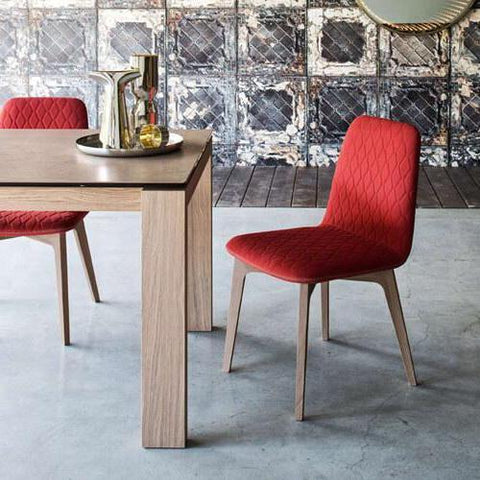 Modern Dining Chairs and Accent Chairs