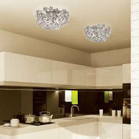 Varaluz Ceiling Lights
