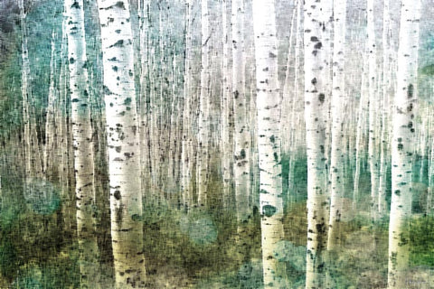 Aspen Green Canvas Wall Art
