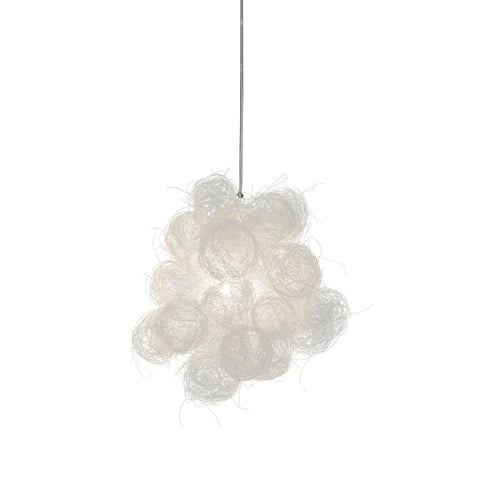 Blum Pendant Light