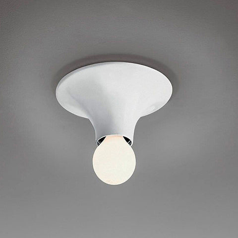 Teti One Light Wall/Ceiling Light