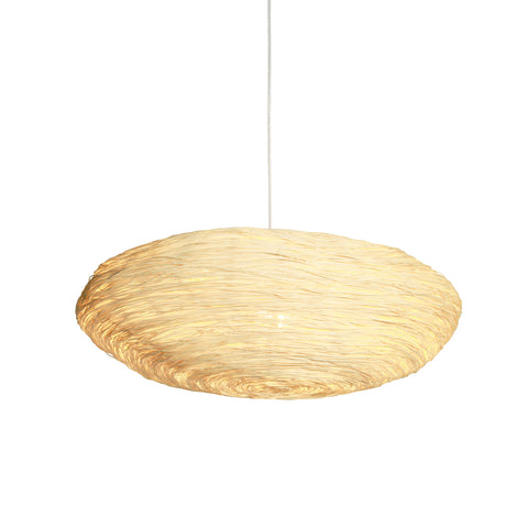 Hanging World Pendant Light