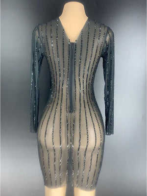 Silver Black Rhinestones Transparent Dress Long Sleeves Bar