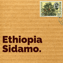 Load image into Gallery viewer, Ethiopia Sidamo Coffee Beans