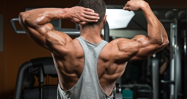 10 Muscle Building Tips To Help In Achieving Better Results