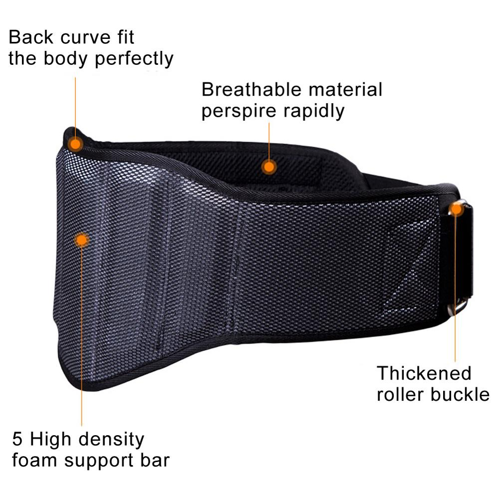 Gym Back Support Belt Weight Lifting