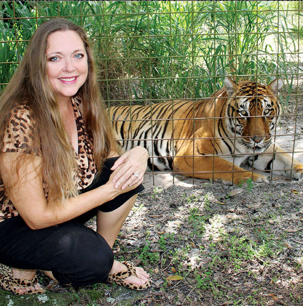 That Carole Baskin: Star of Netflix's Tiger King Documentary Series