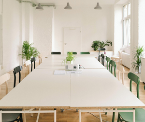 Bright conference room with plants