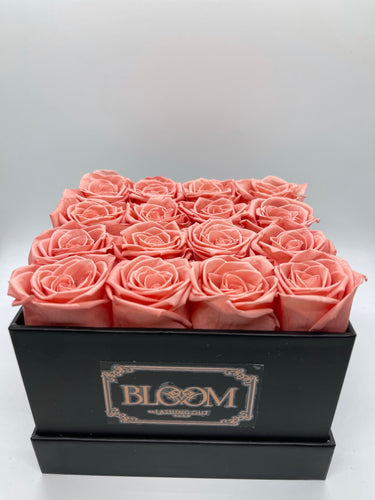 BLOOM - Desire (Coral) *On Hand*