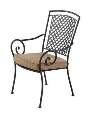 Julianna Outdoor Dining Chair EDP Coated Steel