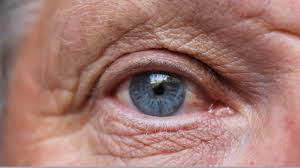 Wet and Dry Macular Degeneration share common link