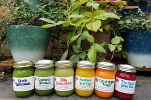 Juice Cleanse Program Bundle