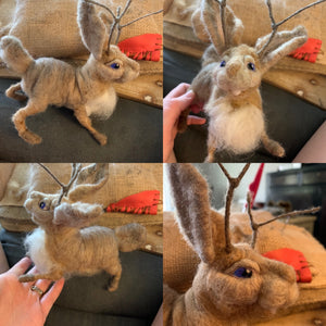 Tandy the Jackalope