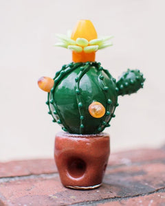 The Blooming Catus Pipe