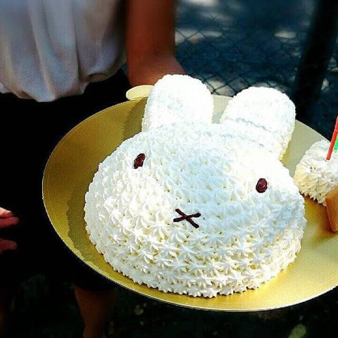 miffy birthday cake