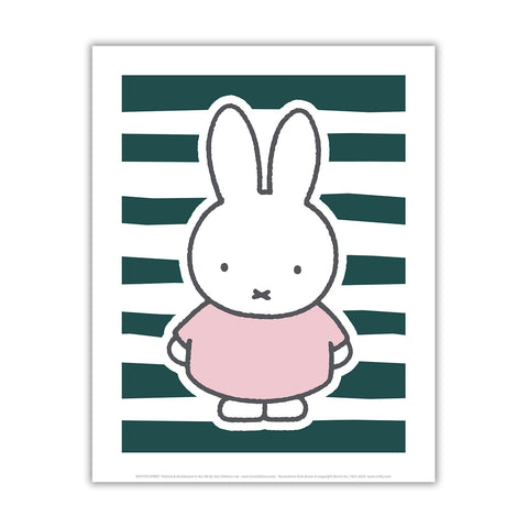 miffy floral expression stripes mini poster