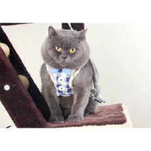 Load image into Gallery viewer, Button Down Cat Harness
