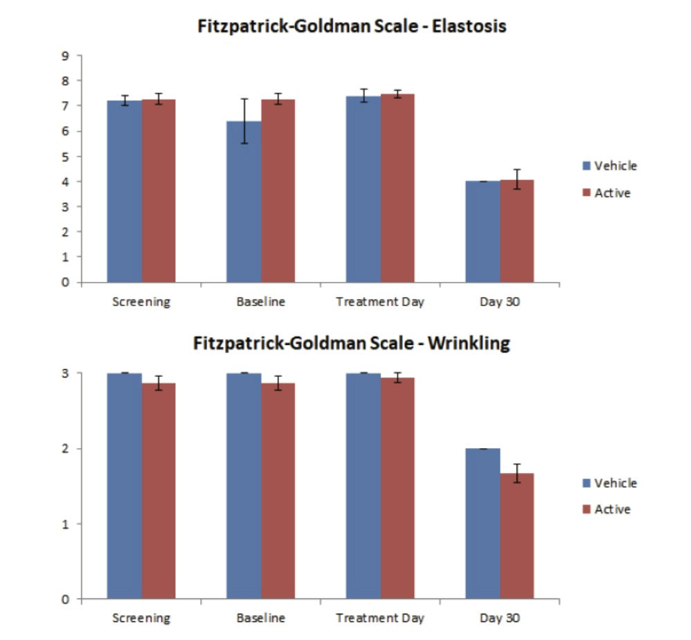 Blinded investigator scoring of the Fitzpatrick-Goldman Elastosis and Wrinkling scale at screening, baseline, treatment day, and day 30