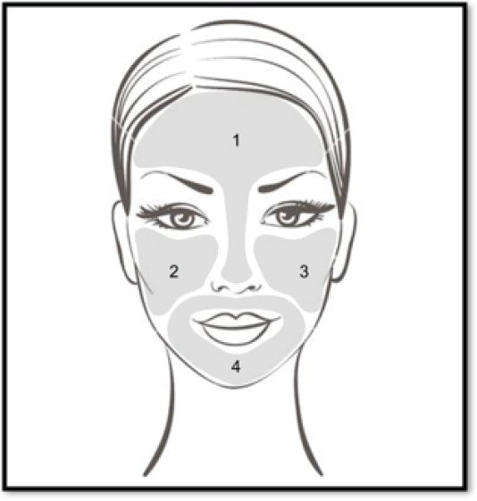 4 Basic Facial Aesthetic Zones