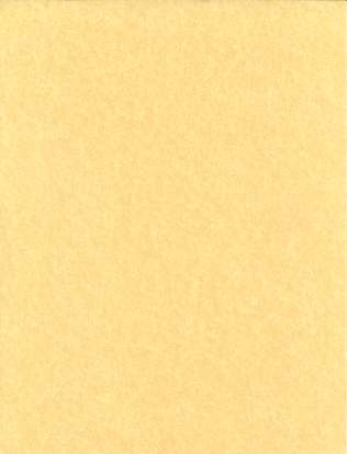 "Light Parchment 500 Pack (8 1-2"" X 11"")"