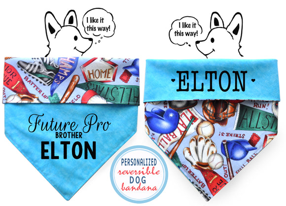 Personalized Stylish Reversible Dog Bandana- Baseball