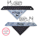 Personalized Stylish Reversible Dog Bandana (Simply Special)