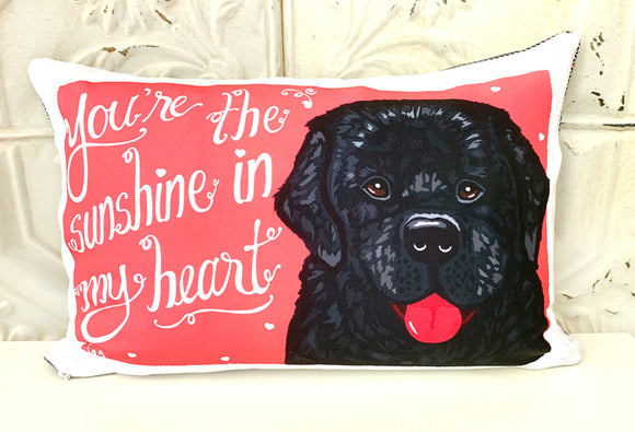 Newfoundland Art Pillow- You're The Sunshine In My Heart
