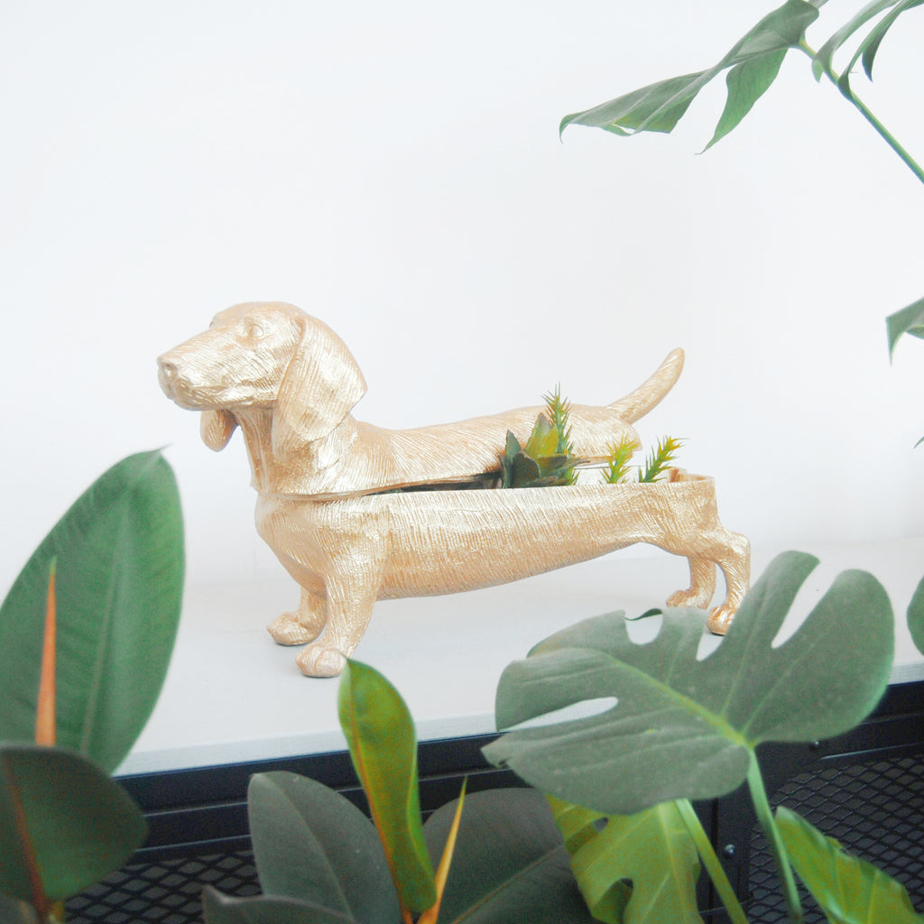 Daschund Gold - The home Accessories Company 1