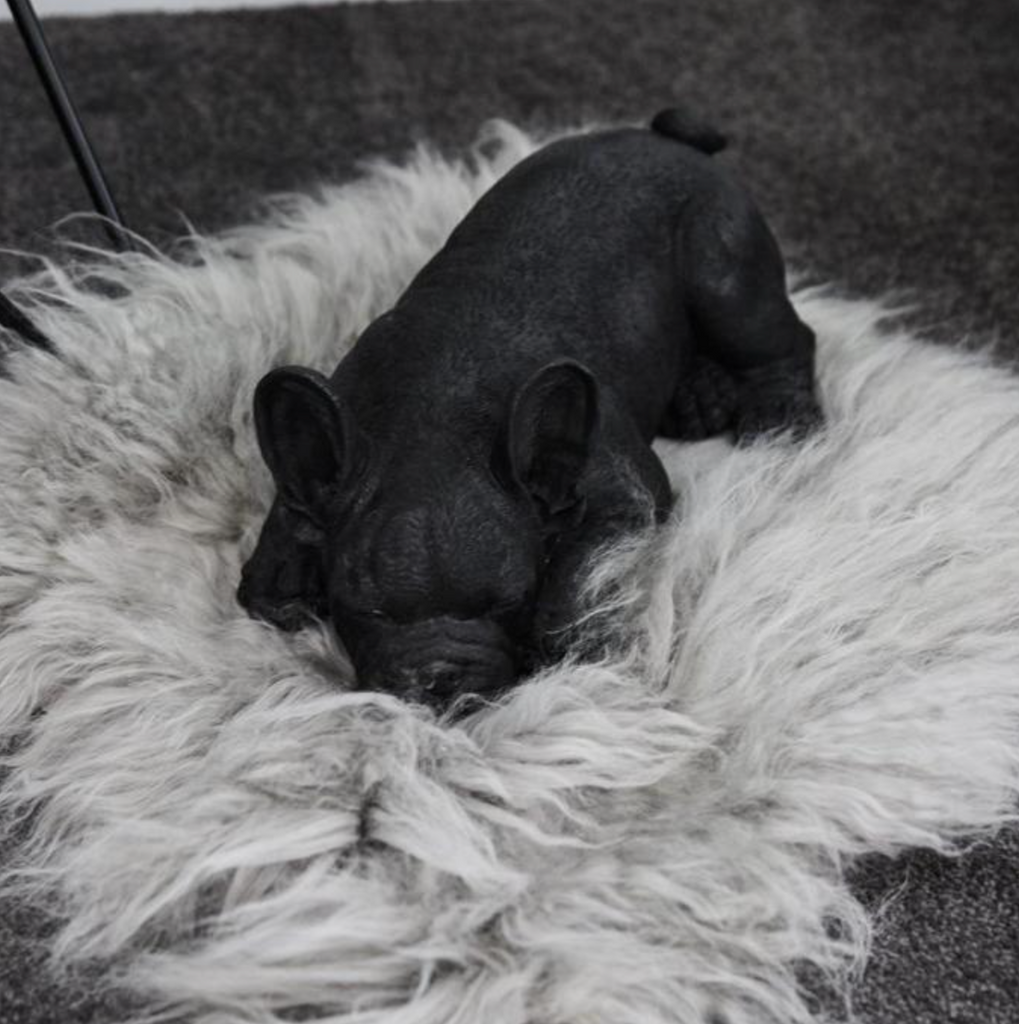 Frenchie Sleeping - Black - The Home Accessories Company 3