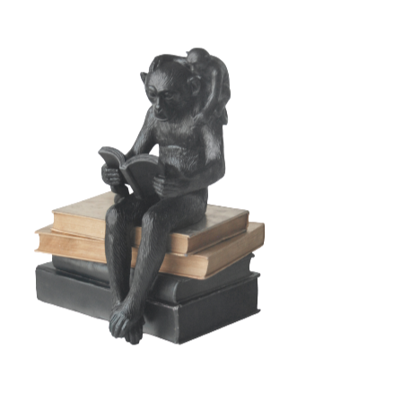 Shelf Monkey - Black - The Home Accessories Company