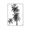 Tropical Landscape Print - The Home Accessories Company 6