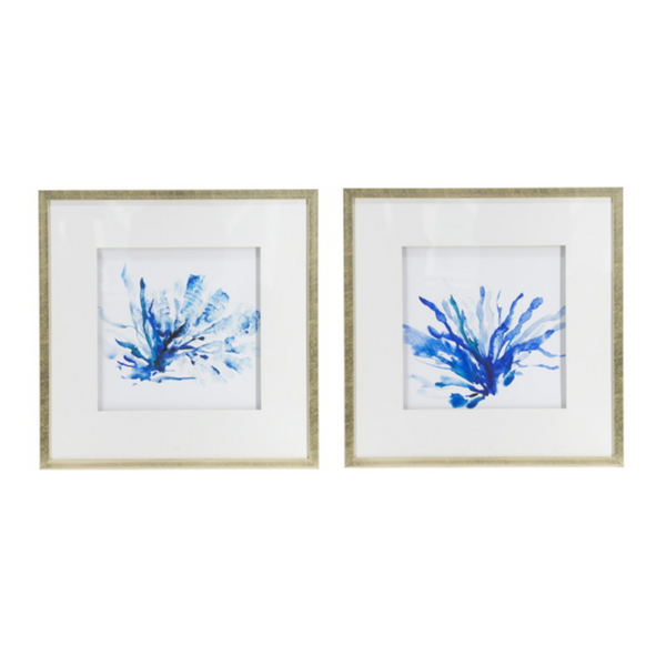 Set of 2 Blue Seaweed Framed Prints - The Home Accessories Company
