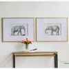 Set of 2 Elephant Framed Prints - The Home Accessories Company 4