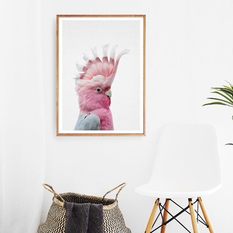 Galah Print  Wall Art- The Home Accessories Company