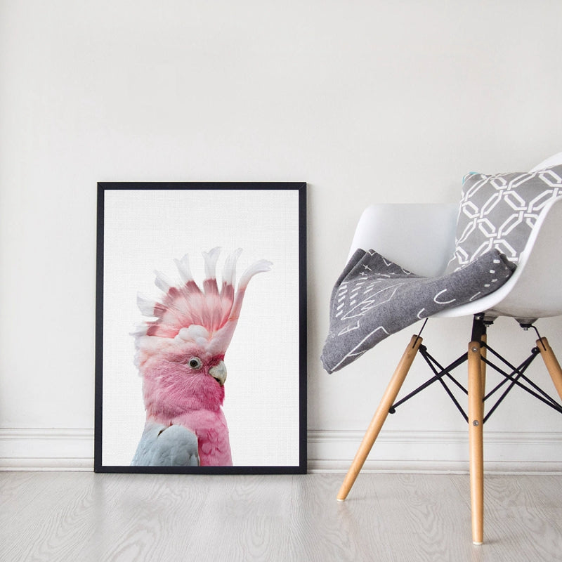 Galah Print  Wall Art- The Home Accessories Company 1