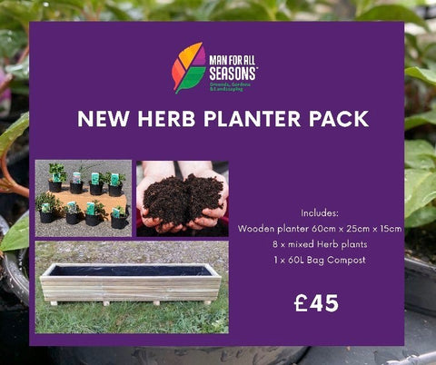 60cm WOODEN HERB PLANTER PACK