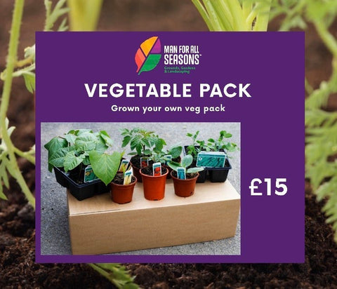 GROW YOUR OWN VEG MIXED BOX