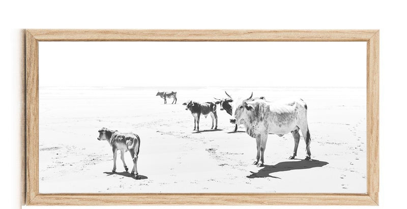 Wall art Nguni