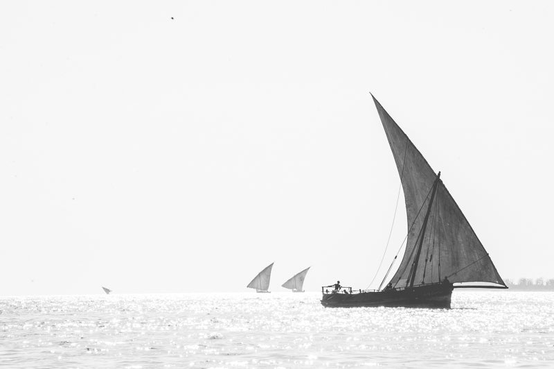 Zanzibar artwork for wall decor South Africa. Dhows in Black and white.
