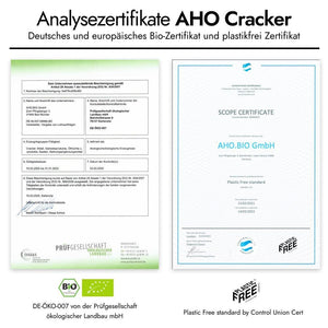 AHO Curry Cracker Raw Vegan Cracker AHO.BIO GmbH