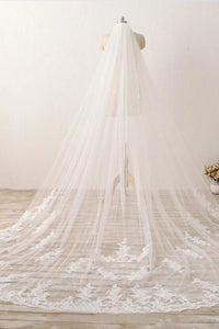 3M Lace Appliques Tulle Cathedral Wedding Veil