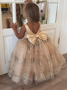 Ball Gown Champagne Tulle Open Back Flower Girl Dresses