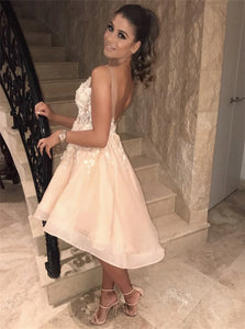 Open Back Mini Champagne Homecoming Dresses with Appliques