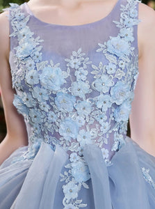 Ball Gown Sky Blue Appliques Organza Sleeveless Prom Dresses