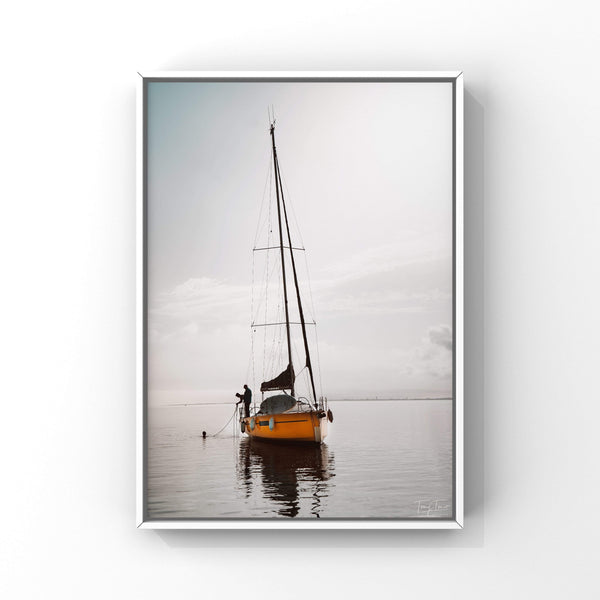 ILE DE RE 0637 TOMY TONIO Photographie Tableau Poster