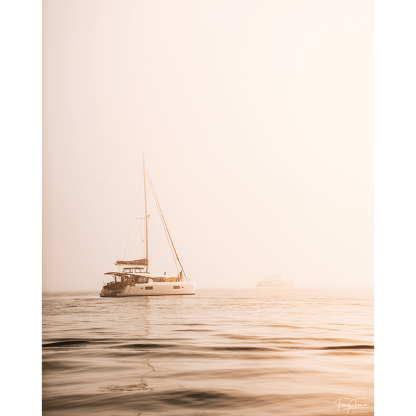 ILE DE RE 0673 TOMY TONIO Photographie Tableau Poster