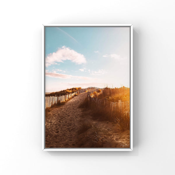 ILE DE RE 2352 TOMY TONIO Photographie Tableau Poster