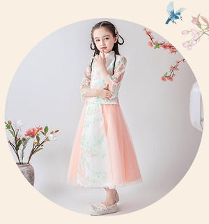 Chinese Style,Gift Birthday Dress, Flower Girl Dress, Toddler Dress